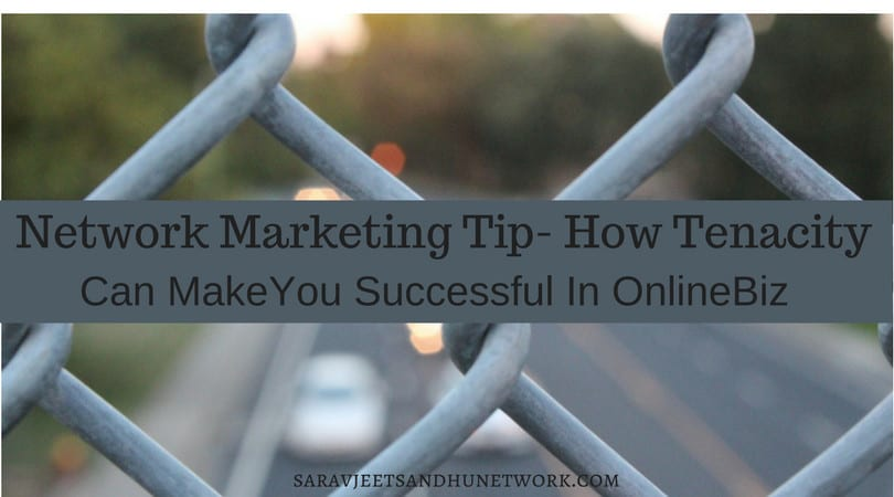 Network Marketing Tip - How Tenacity Can Make You Successful In OnlineBiz